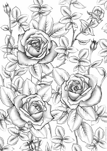 Printable Roses to Color | Coloring pages of roses radiate a ... | 500x354