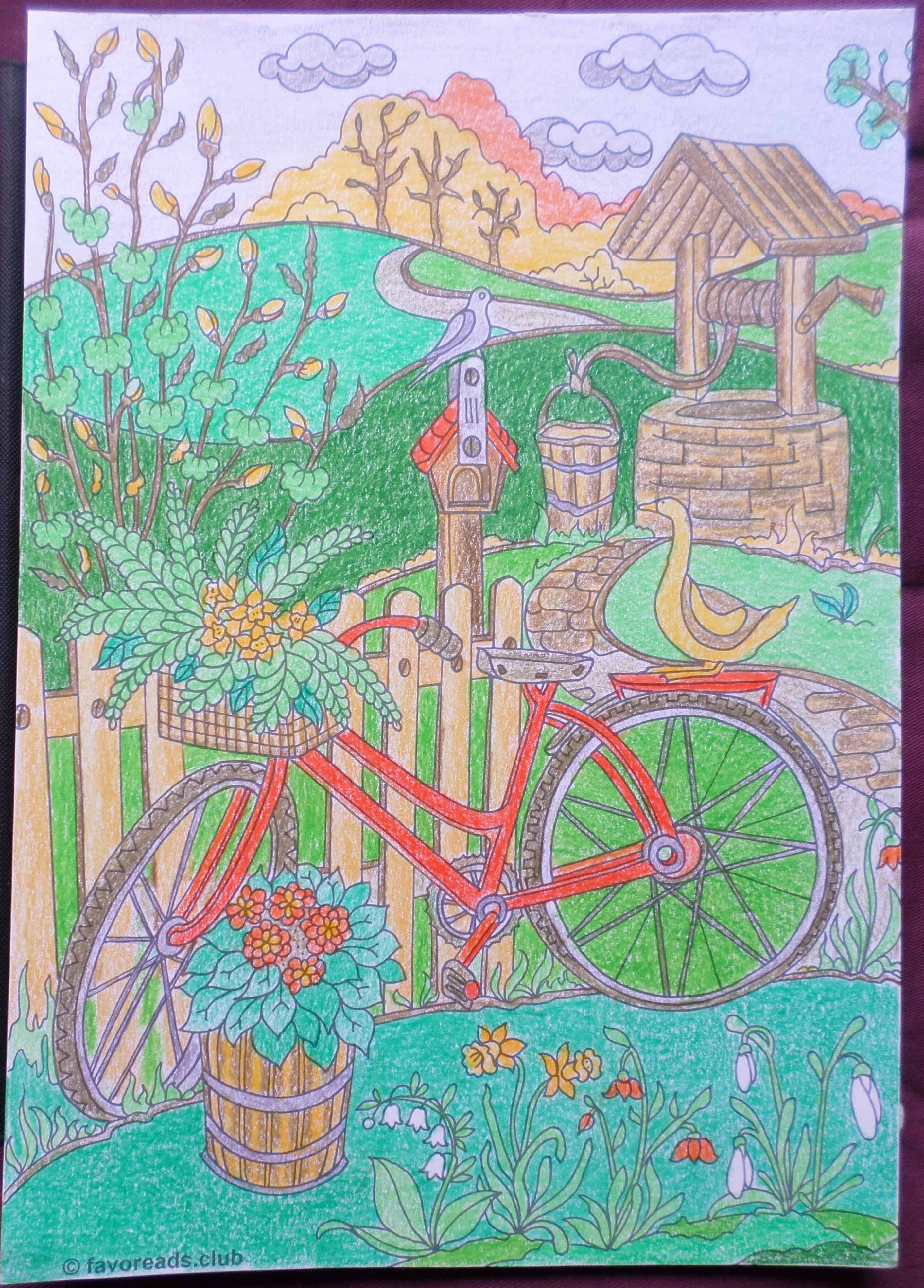 Country Spring – Bicycle