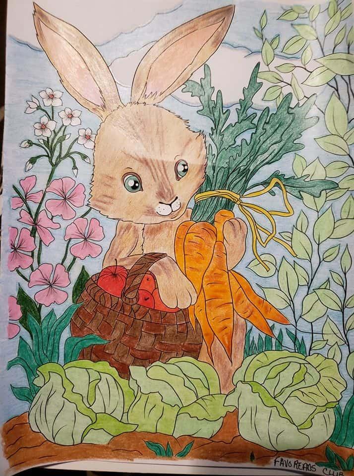 Bunny with Veggies