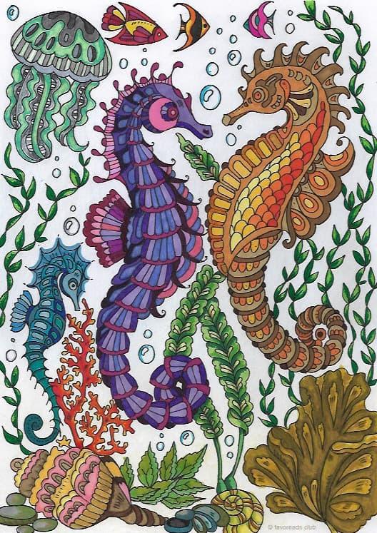Ocean Life – Sea Horses