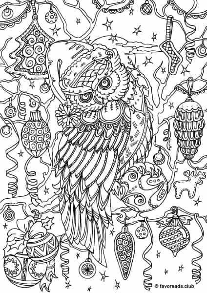 Christmas Joy – Winter Owl