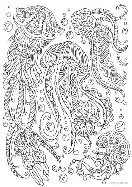 Ocean Life – Jellyfish