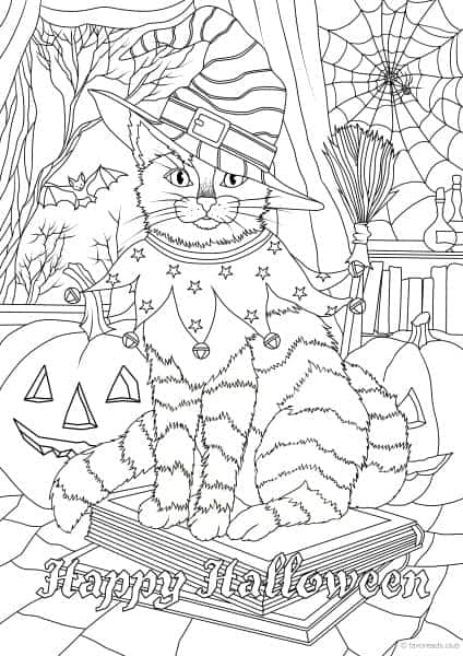 Holidays – Halloween Cat