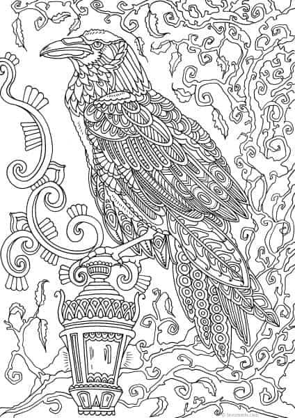 Holidays – Raven