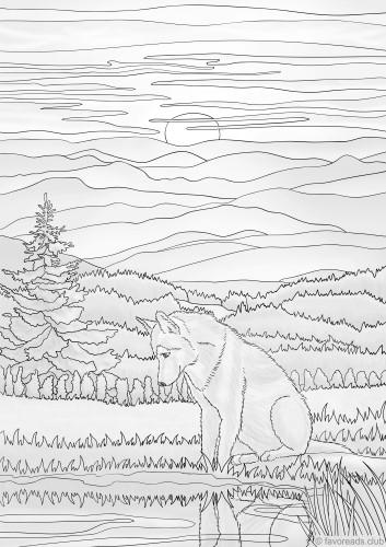Wolf Enjoys the Sunset