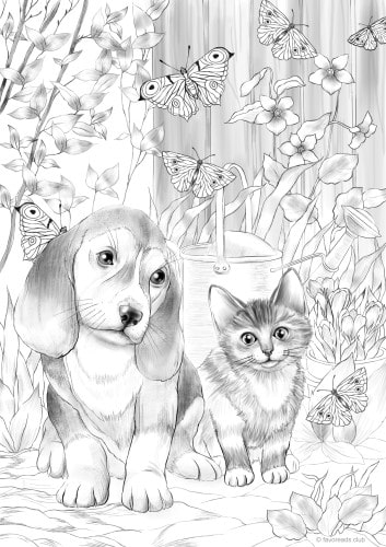 Kitty and Dog