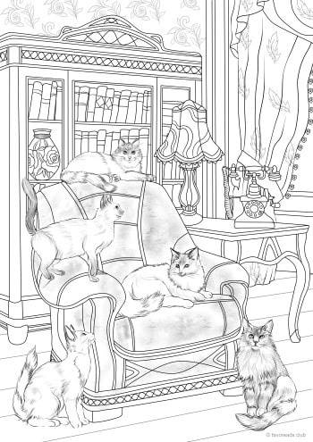 Cats and Armchair