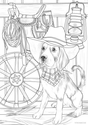 Cowboy Dog