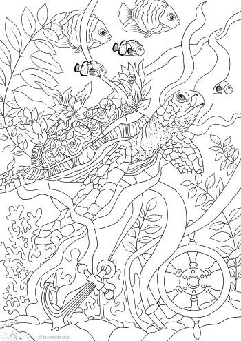 Fantasy Turtle